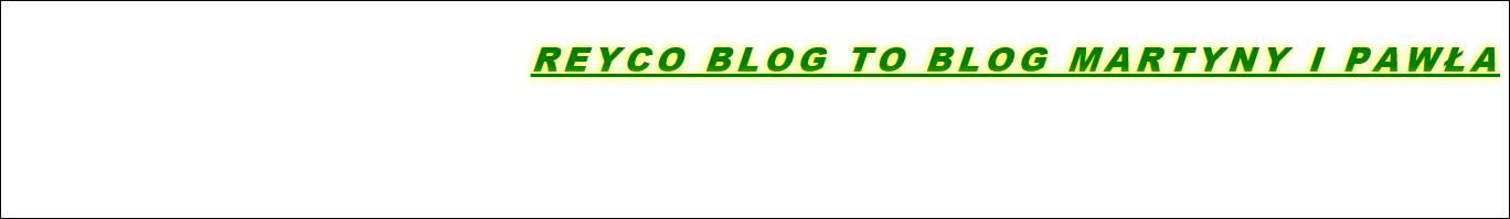 Edycja tekstu na stronie - css | REYCO strony www i e-learning